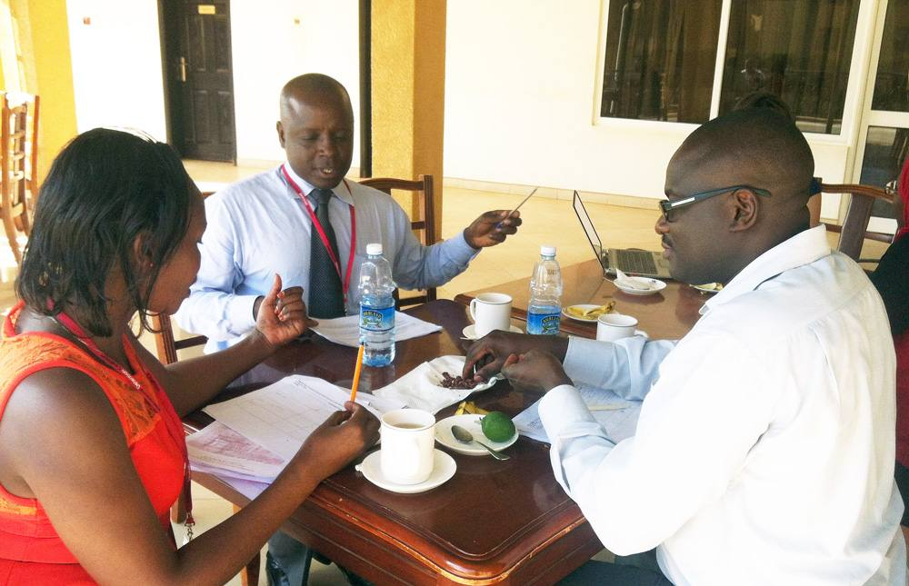 Participants from Uganda and Kenya compare notes on country action plans